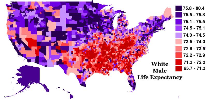 Life Expectantcy